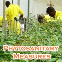 Schools, Colleges & Universities offering Certificate Higher Diploma and Diploma in Sanitary & Phytosanitary Measures Course in Kenya Intake, Application, Admission, Registration, Contacts, School Fees, Jobs, Vacancies