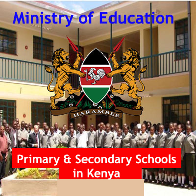 Public Primary Schools in Kenya, Primary Schools in Kenya