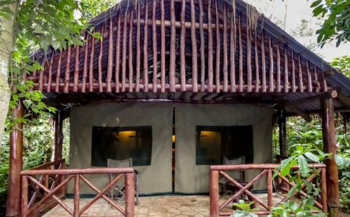 Mid-Range Accommodation Kibale National Park Uganda