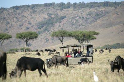 Masai Mara View Lodge