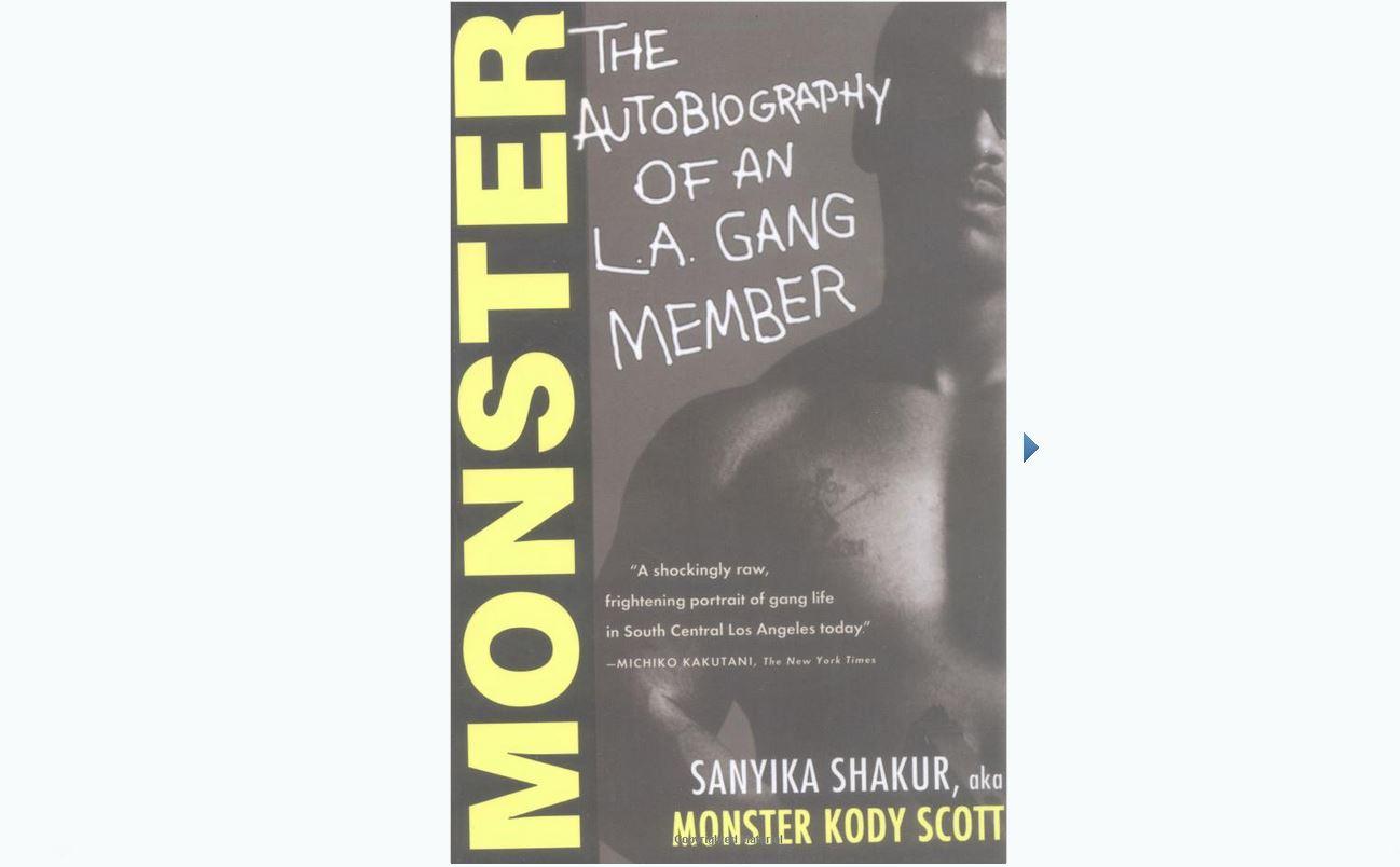 Book review of Monster, The Autobiography of an L.A. Gang Member