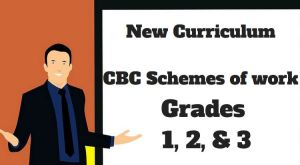 Understanding CBC Schemes of work for Grade One, two and three for new New Curriculum