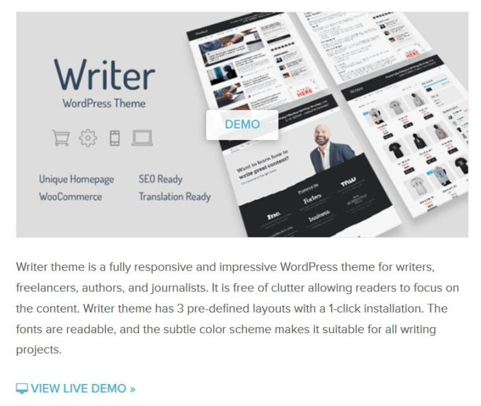 Professional WordPress theme for writers