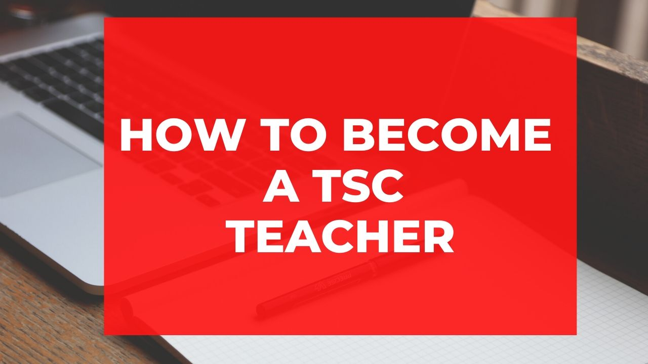 A guide on how to become a TSC teacher in Kenya and get TSC number