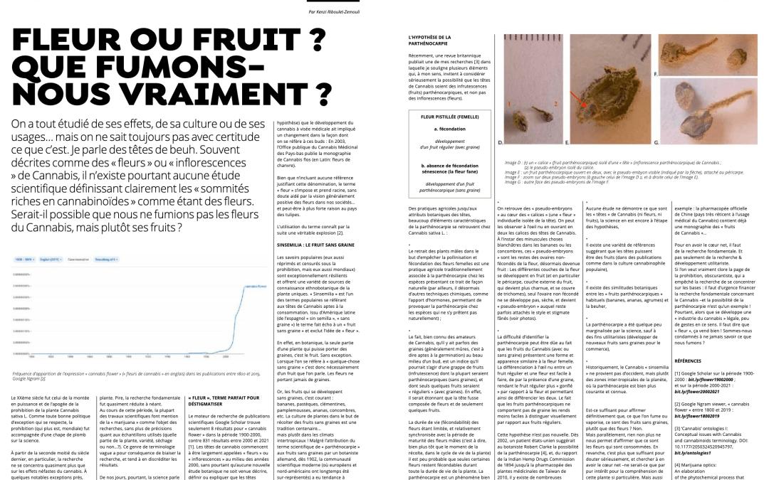 Fleur ou fruit : que fumons-nous vraiment ?