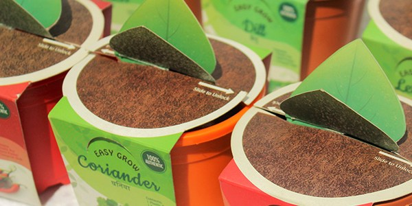 Planter Kit packaging design project by Keon Designs for Chajjed Gardens.