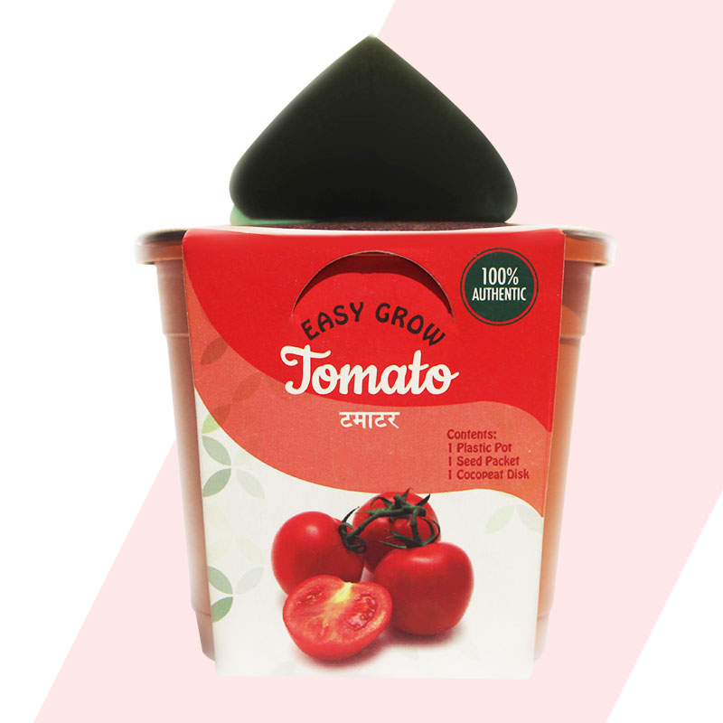 Planter Kit packaging design project by Keon Designs for Chajjed Gardens. Tomato Packaging Design
