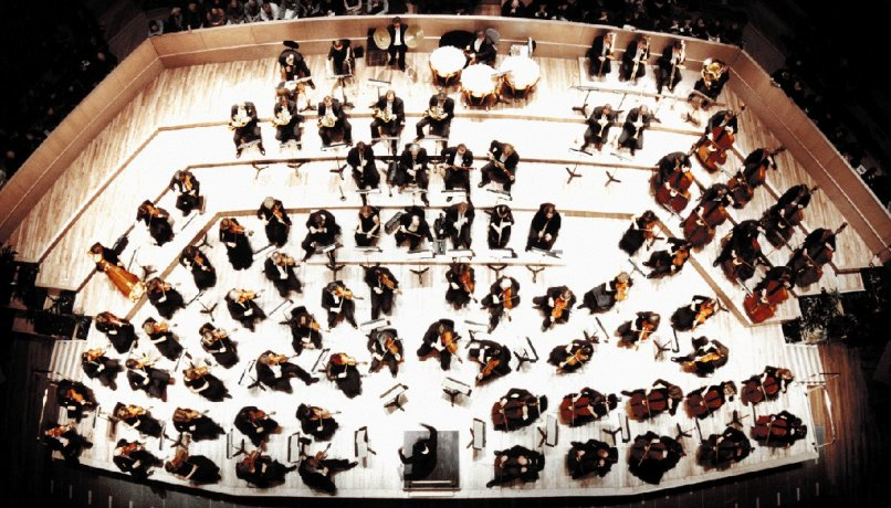 An image of the orchestra depicting the role of each level of employees