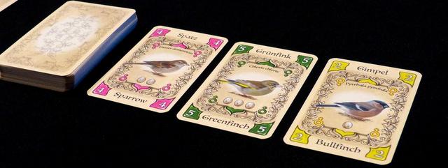 Piepmatz - Little songbirds társasjáték