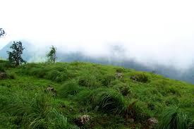 Highrange Tourism Kerala