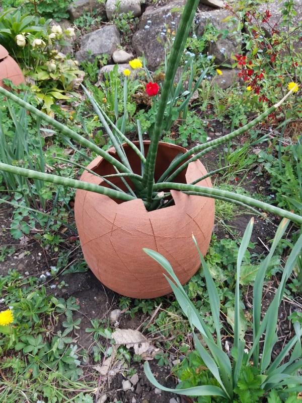 Dino vejce - květináč