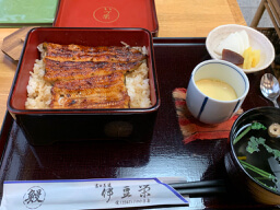 高田馬場の【伊豆栄】さんでうな重の上を食べて来ました。うな重ってコスパ悪い感じがしますか?