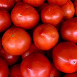 Tomatoes May 10 - Dec 31