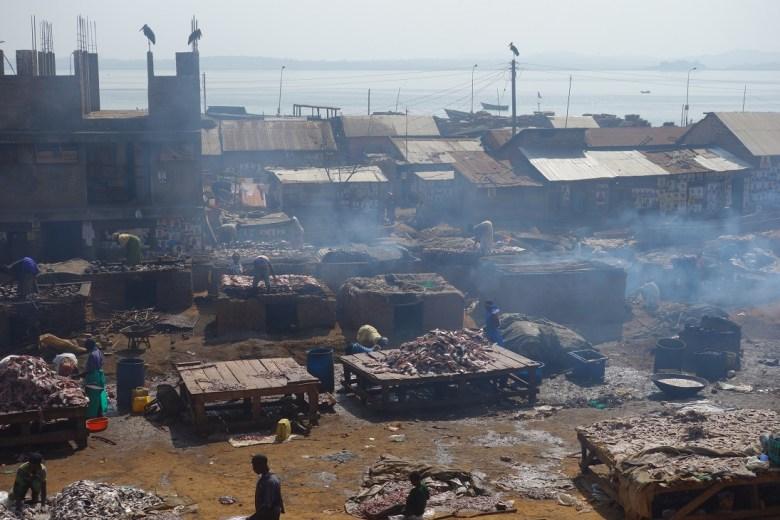 Kein passendes EU-Bild gefunden, deshalb hier die Fischproduktion am Viktoria See in Ggaba