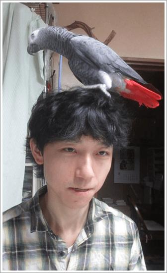 藤井聡太 対戦相手
