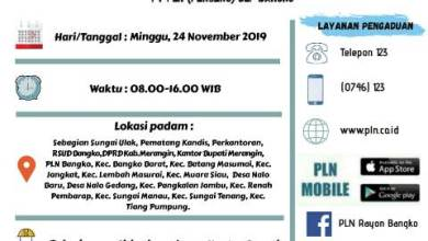 Photo of Info Pemeliharaan Jaringan PLN Merangin