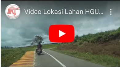Photo of Video Lokasi Lahan HGU PTPN 6 Kayu Aro yang Disewa ke Petani