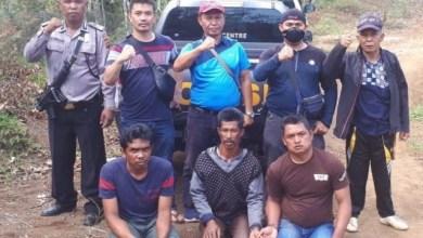 Photo of 3 Pencuri Kulit Kayu Manis Warga Ujung Ladang Kerinci Ditangkap Polisi