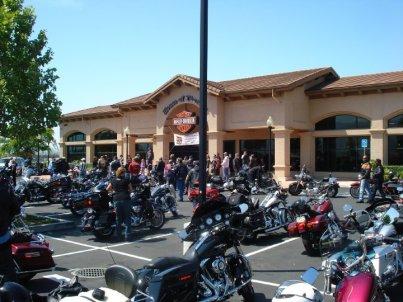 Harley's at House of Thunder in Morgan Hill