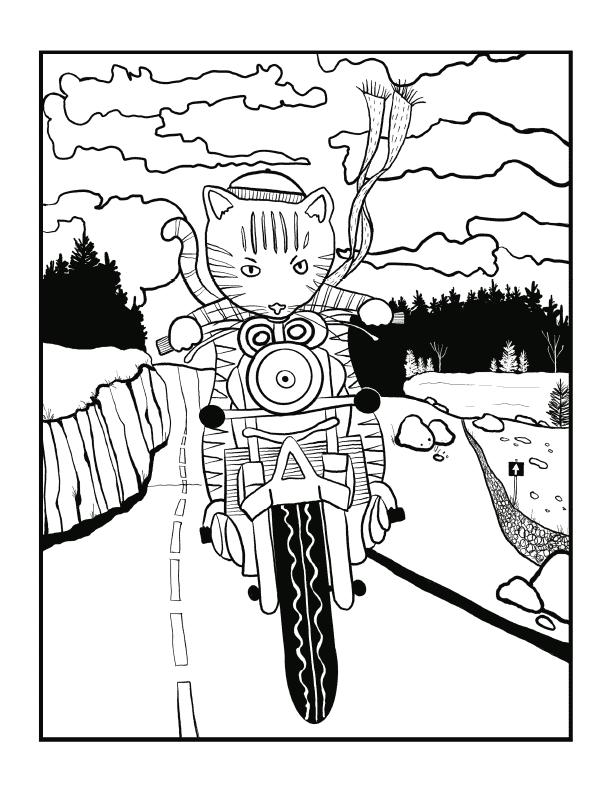 Motor Cat