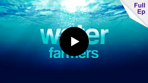 Water Farmers - Purple Sheep Productions - Auckland Video Production
