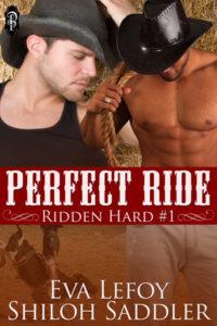 Perfect-Ride300x450