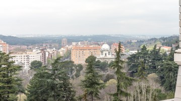 View from the palace