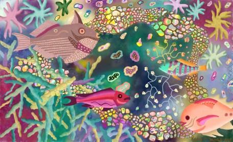 Sea Life-3