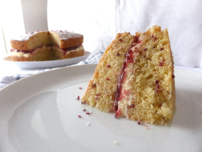 Raspberry-cake-slice-of-11