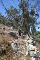 Climbing the Path
