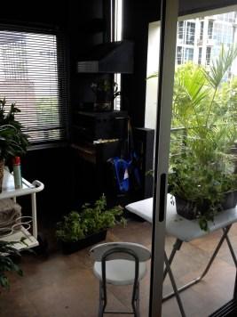 Plant Patio