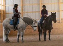 Working Equitation Feb 2 5