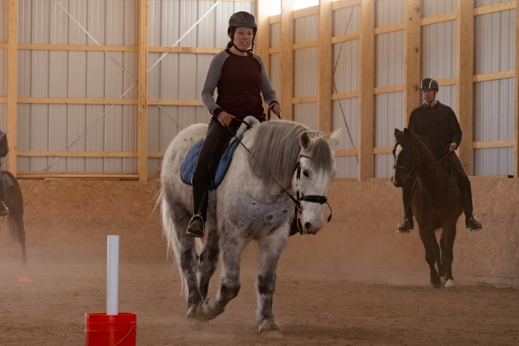 Working Equitation Feb 2 9