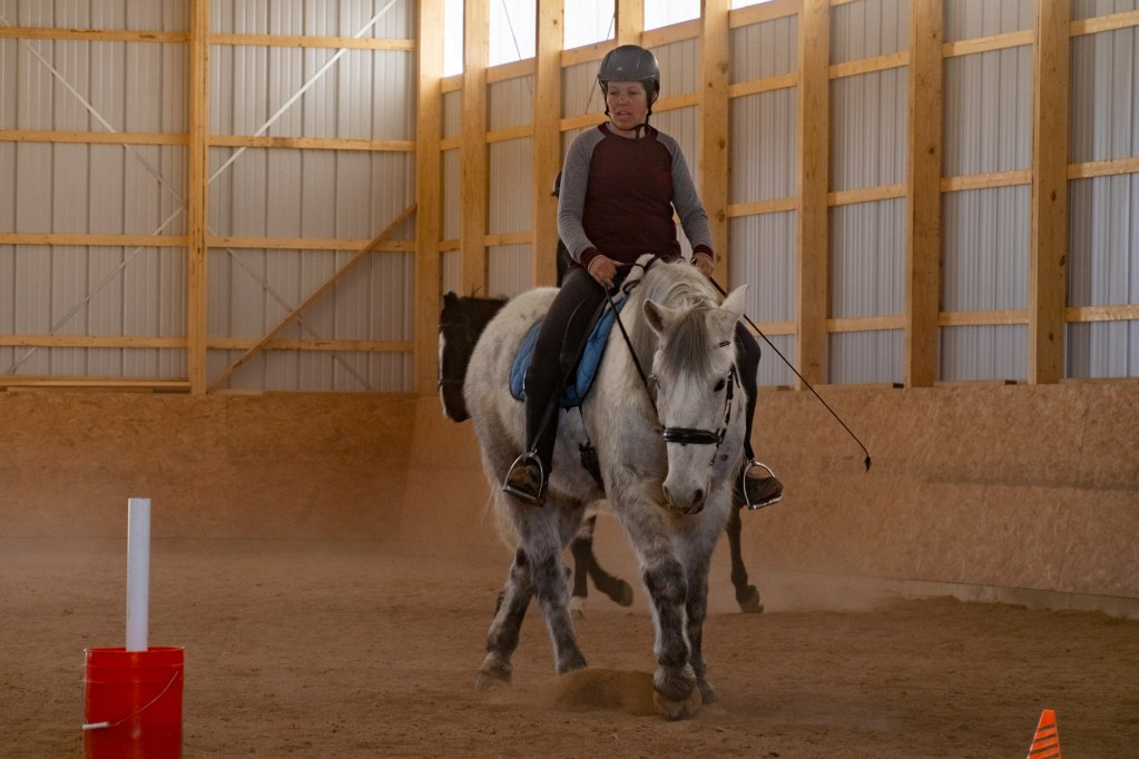 Working Equitation Feb 2 10