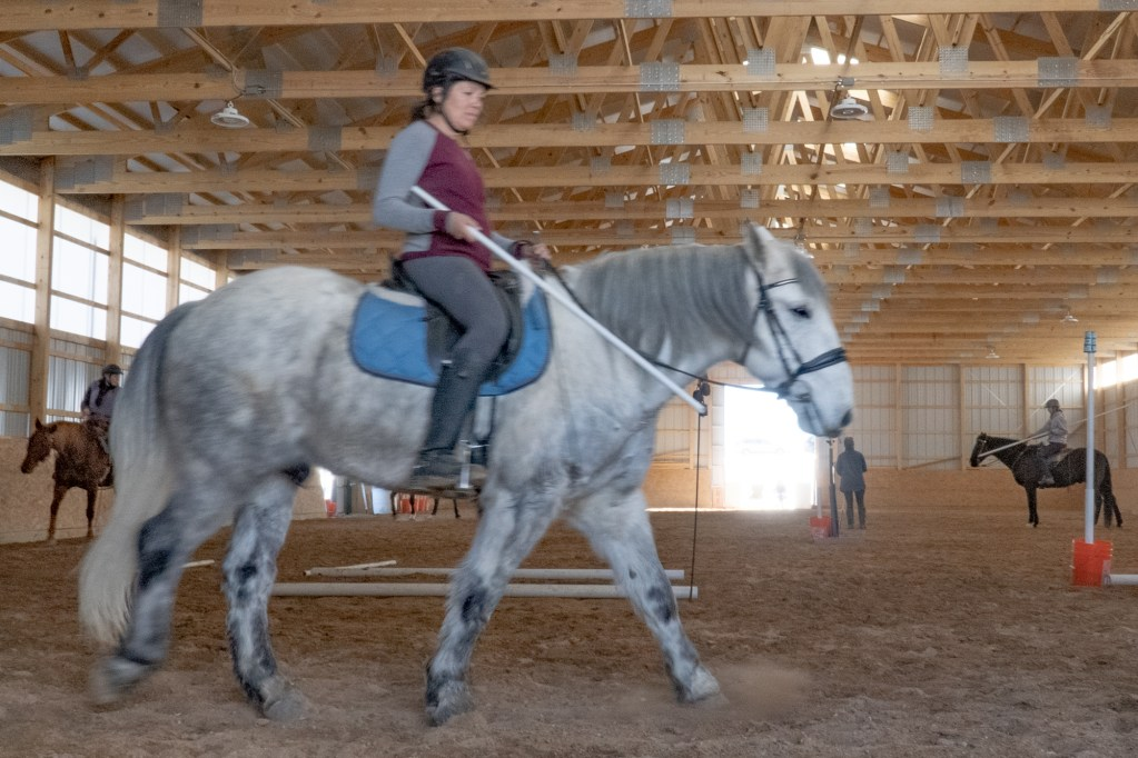 Working Equitation Feb 2 25