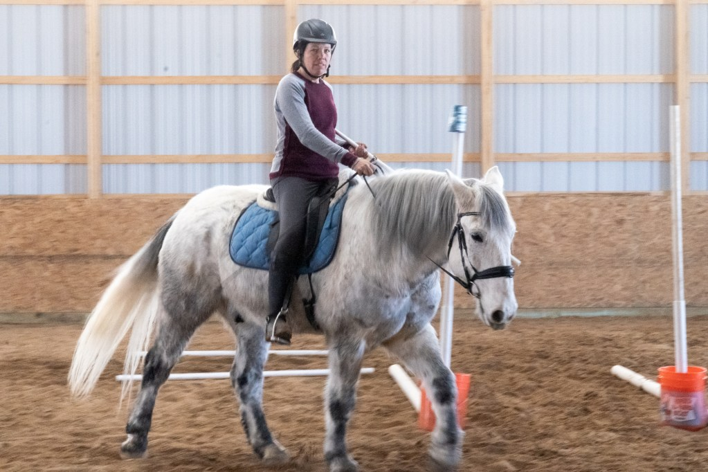 Working Equitation Feb 2 26