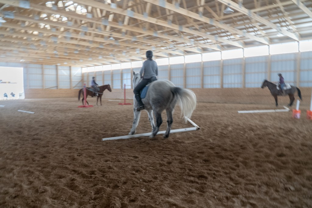Working Equitation Feb 2 30