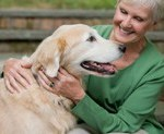 ACUPUNCTURE FOR DOGS? HOLISTIC VETS SWEAR BY IT