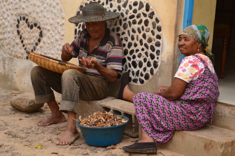 Experience Boa Vista, Cape Verde – Choose Happy