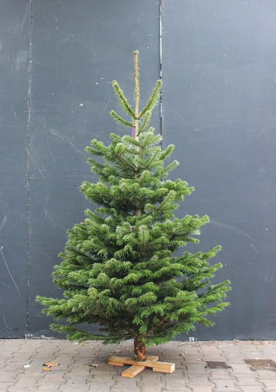 Kerstboombezorging.nl nordmann kerstboom online kopen