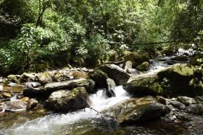 Salento-Valle del Cocora Colombia Southamerica_Travel_Kerstin Musl_13