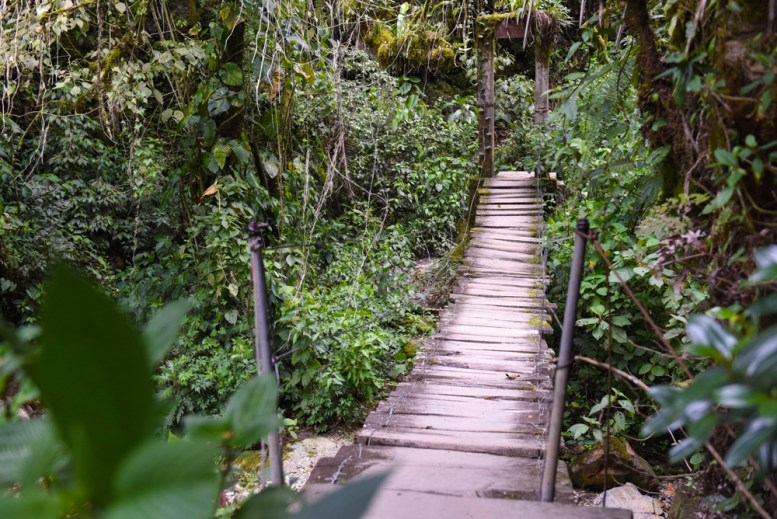 Salento-Valle del Cocora Colombia Southamerica_Travel_Kerstin Musl_15