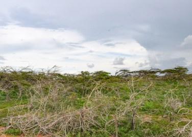 Punta Gallina_La Guajira_Colombia Southamerica_Travel_Kerstin Musl_023