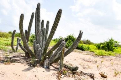 Punta Gallina_La Guajira_Colombia Southamerica_Travel_Kerstin Musl_065