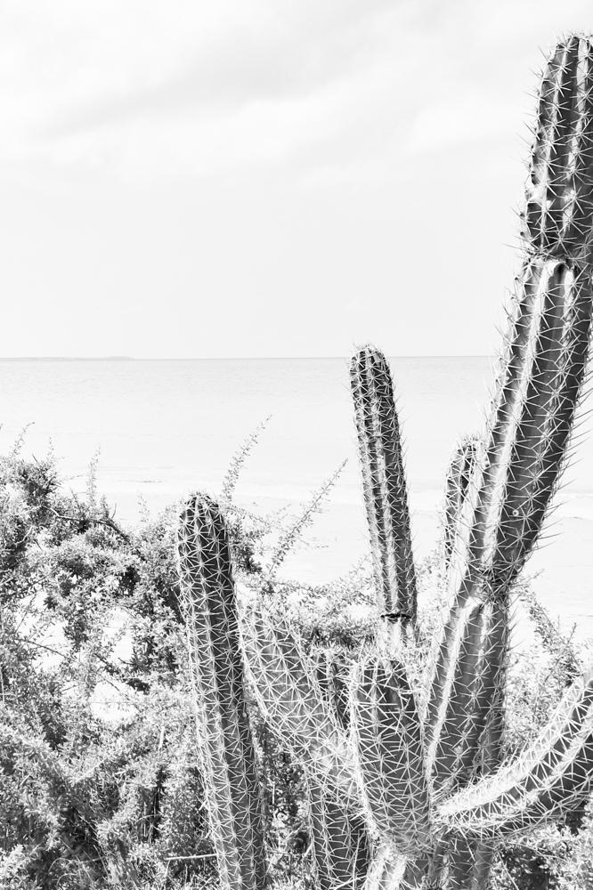 Punta Gallina_La Guajira_Colombia Southamerica_Travel_Kerstin Musl_068