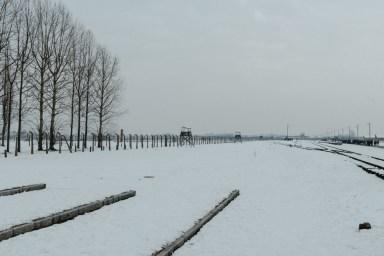 Polen Day 06_KZ Auschwitz - Birkenau_Winter 2018_Kerstin Musl_30