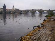 Praga-Czech-kersz-03