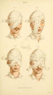 human-body-vintage-scientific-illustration-naturalist-drawing-0010