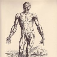 human-body-vintage-scientific-illustration-naturalist-drawing-0034