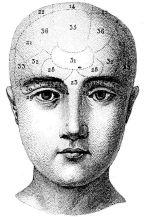 human-body-vintage-scientific-illustration-naturalist-drawing-0061